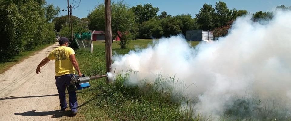 Continúan los trabajos de fumigación y desinfección en distintos sectores y puntos de la ciudad