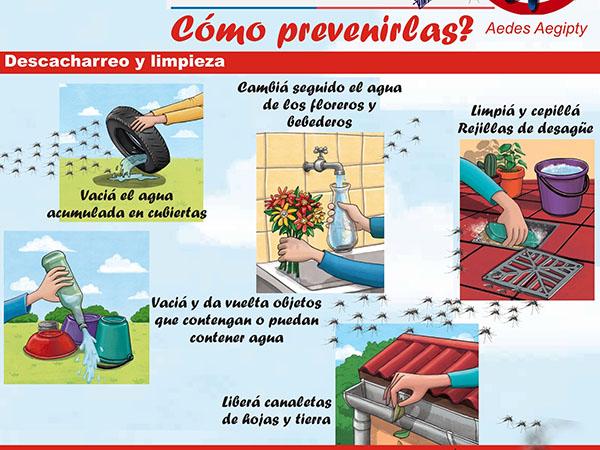 Resultado de imagen para dengue prevencion